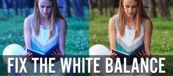 تراز سفیدی