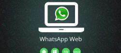 نسخه وب وات ساپ
