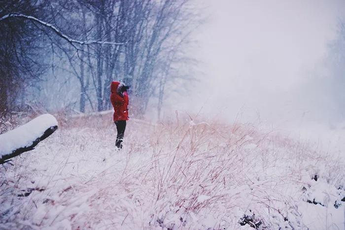 مدل زن که در کنار یک جنگل در برف ایستاده است - ایده های عکاسی در زمستان