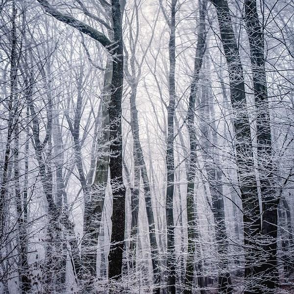 پرتره خلاقانه یک مدل زن در برف - ایده های عکاسی در زمستانی