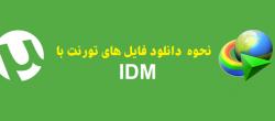 دانلود فایل های تورنت با IDM