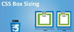 Box-sizing در CSS