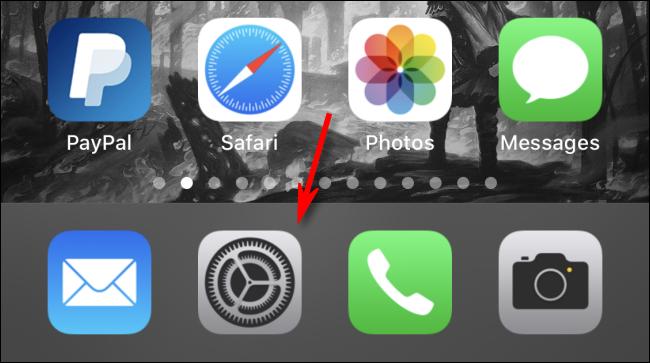 تنظیمات را در iPhone باز کنید