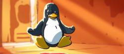 ۱۰ تا سبک ترین توزیع لینوکس که تقریباً به فضایی نیاز ندارند !