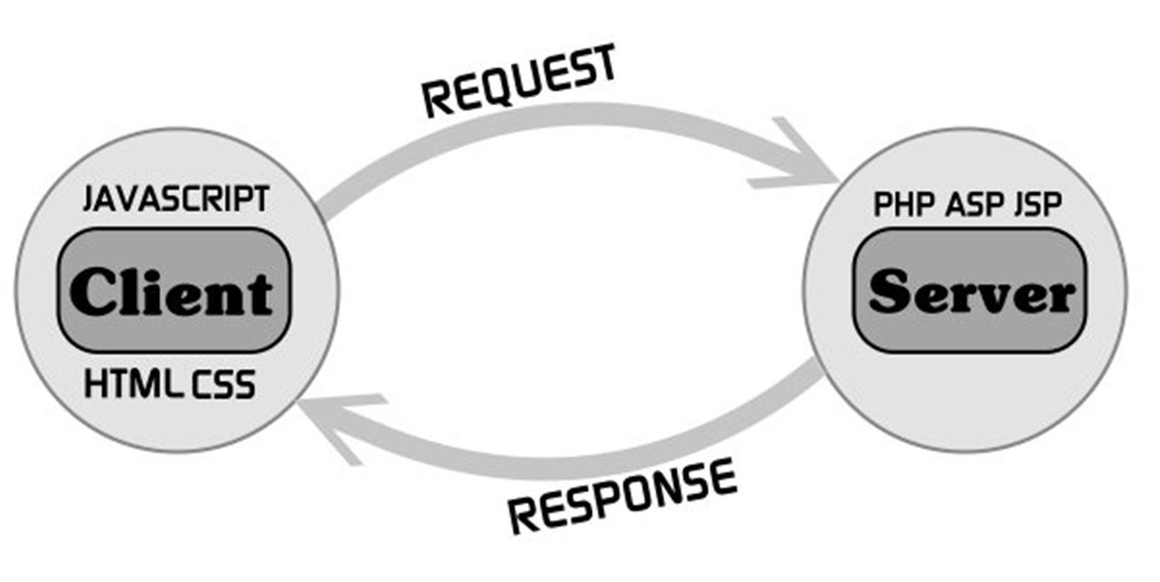 انواع زبان های برنامه نویسی تحت وب