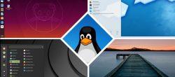 ۱۰ تا بهترین توزیع لینوکس برای کاربران ویندوز