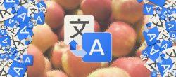 نحوه استفاده از Google Translate در هر برنامه اندروید