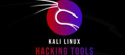۲۱ ابزار مهم نفوذ و هک  در کالی لینوکس