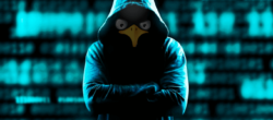 بهترین نسخه لینوکس برای هک (۸ نسخه برتر)